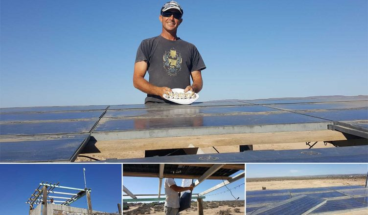 Baja Solar - the Green Go Solar Project
